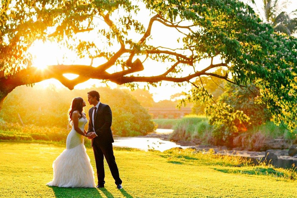 Hawaii Wedding Photography Palm Meadow