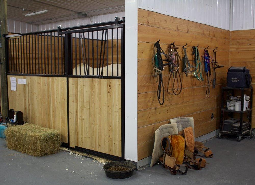 Horse Stalls & Tack Area