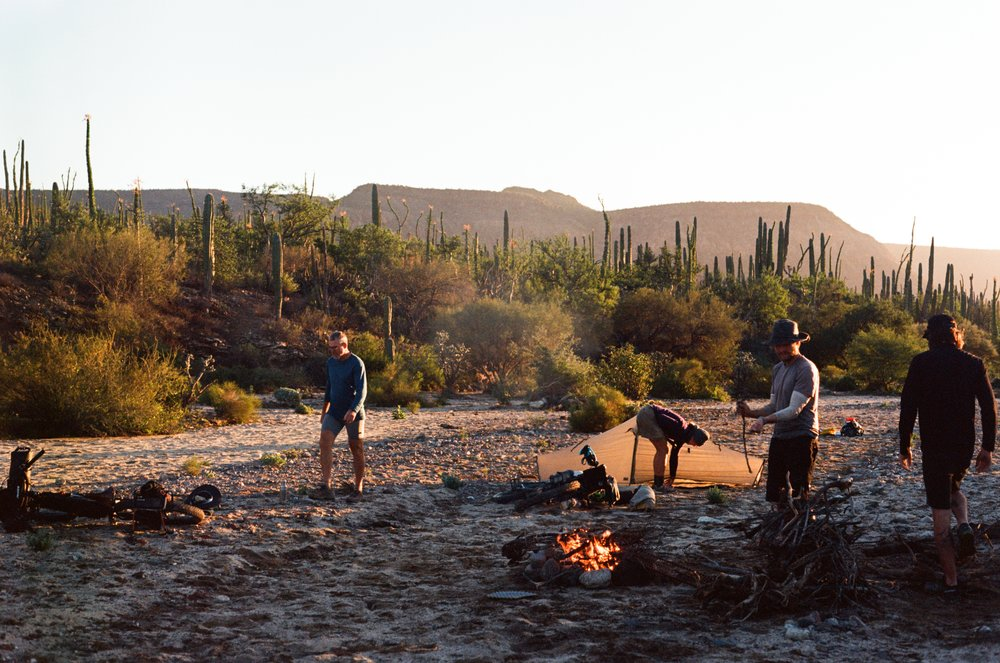 Wild camping is prime along the Baja Divide. Every evening just before dark, we would start hunting for flat ground concealed from the road by boulders or large cacti. Usually the only danger we worried about was scorpions. Every night we would work together to build a big campfire and enjoy dinner and tequila under the stars.