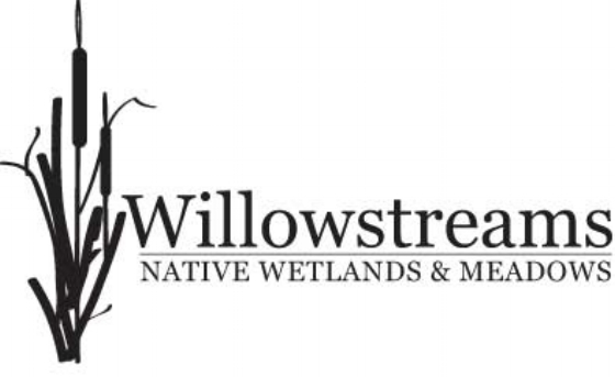 Willowstreams