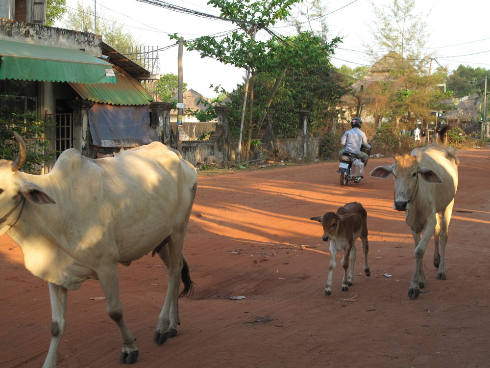 Locals spotted on our trip to get frozen chocolate bars, Sihanoukville