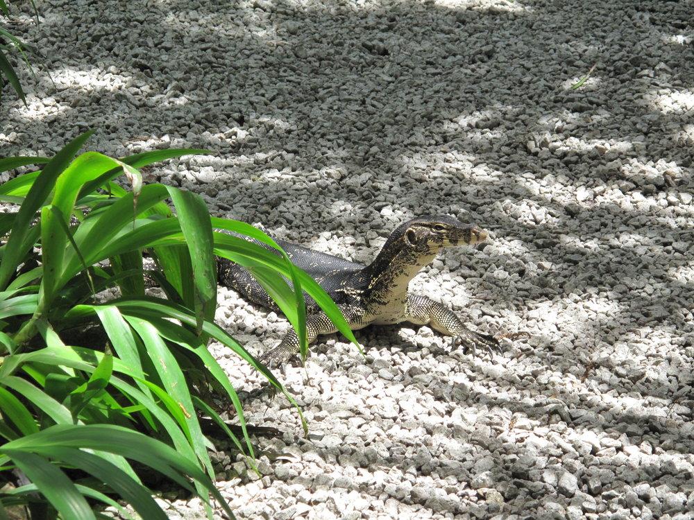 Spice Gardens, Penang