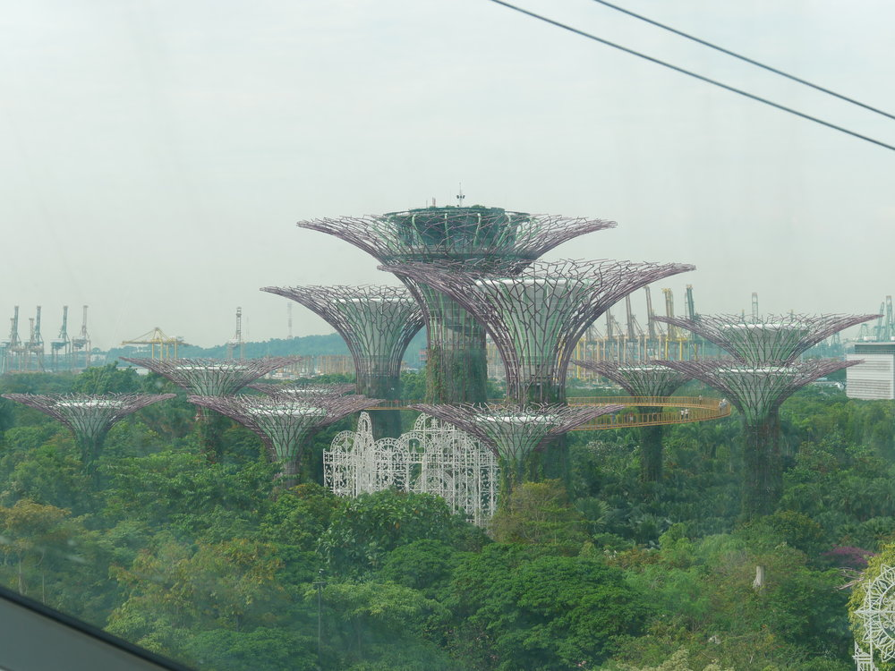 Singapore Super Trees, Gardens By The Bay