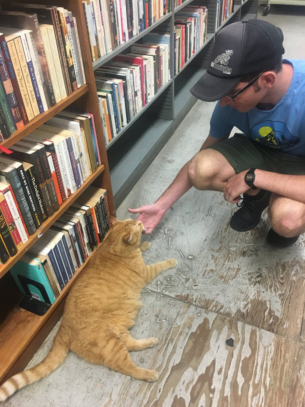 No photos from the Barnes Foundation, so here's a photo of Zev making friends with a tubby cat from a nearby bookstore