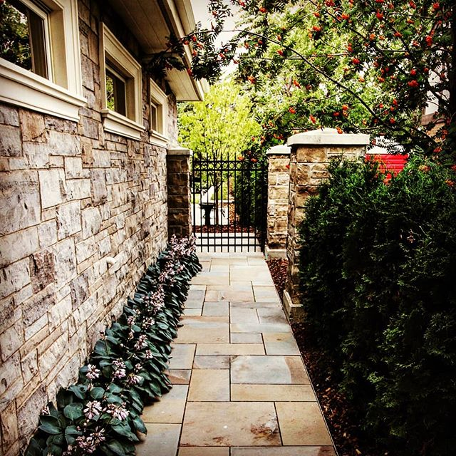 This job was custom top to bottom: Stone pillars to match the house, imported natural stone pavers, custom fabricated wrought iron fencing and so on. And absolute favorite of ours. And check out those Hosta!  #jadelandscaping #yeglandscaping #yegcustom #yegdesign #yeglandscaper #yeg #yegphotographer #yeglocal #landscapedesign #landscapearchitecture #landscaping #pavingstones #dimensionalflagstone #sandstone #hardscaping #softscaping #hosta #cedars #pathway #wroughtiron #owensoundstone