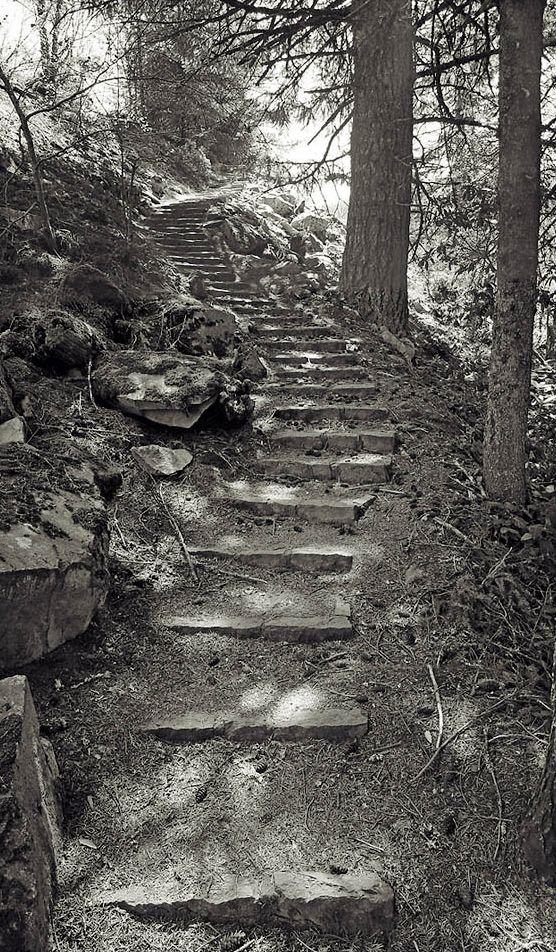 Barlow trail Cascades.jpg