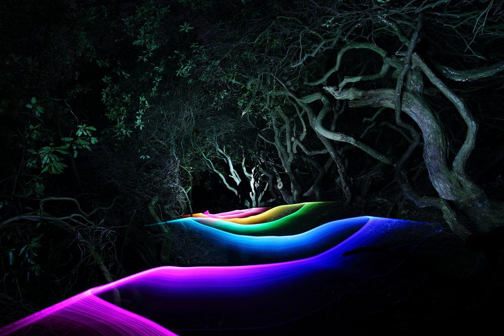 Lurking by Tim Gamble