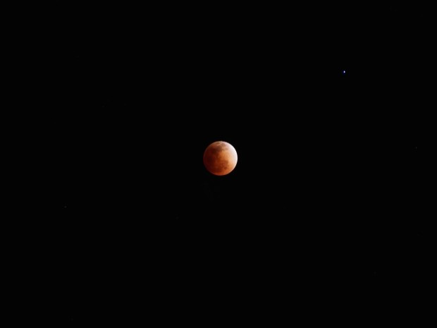 Blood moon lunar eclipse!