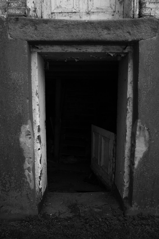 intothemill.jpg