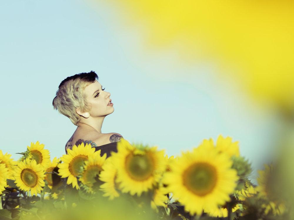 sunflowerfieldforever.jpg