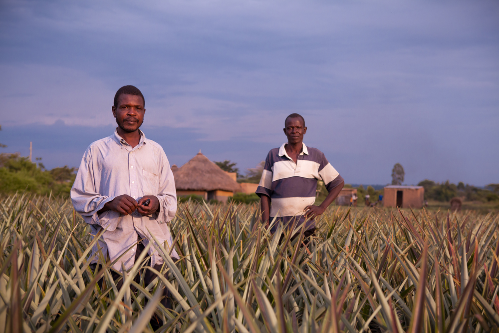 Proud Farmers-2.jpg