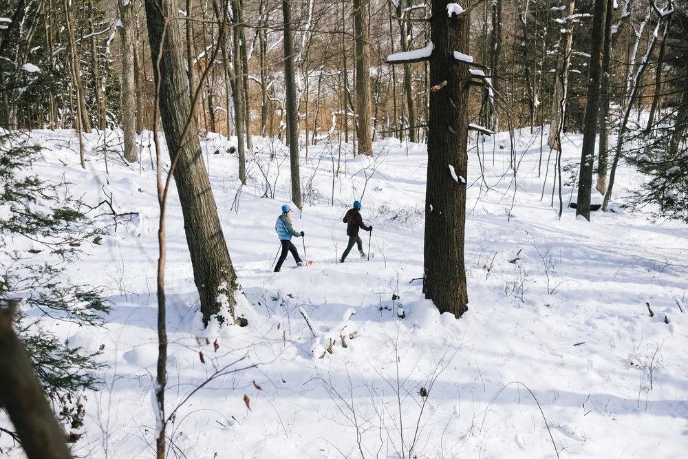 YN_KVSP_snowshoe-32.jpg
