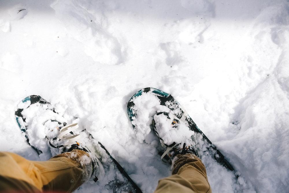 YN_KVSP_snowshoe-17.jpg