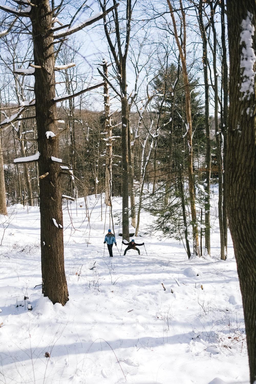 YN_KVSP_snowshoe-33.jpg