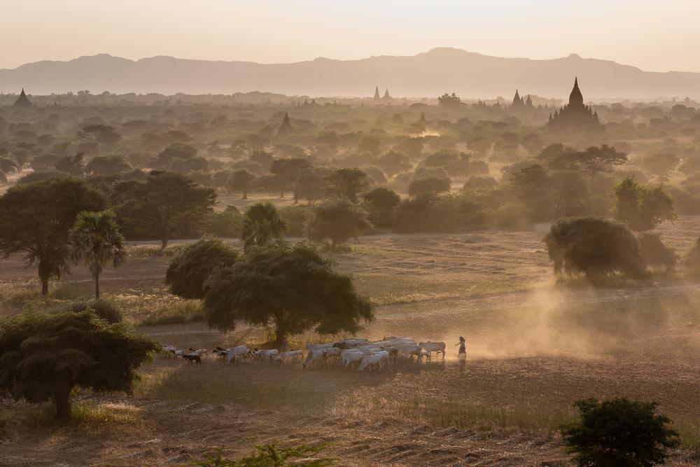 20131220-IMG_7129-02139-Bagan-day1.jpg