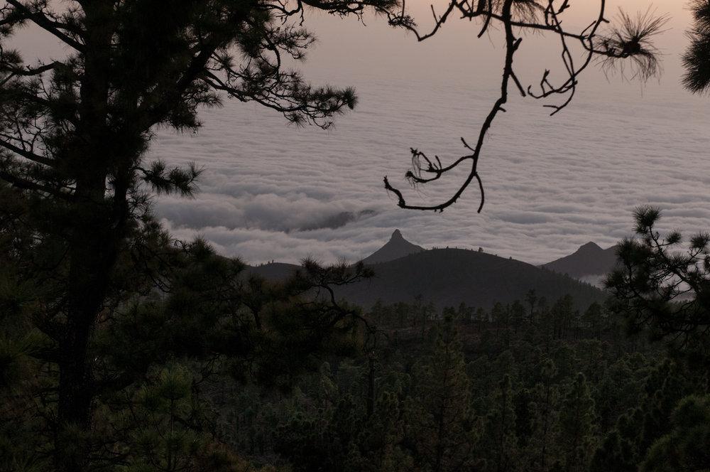Tenerife-171116-7104.jpg