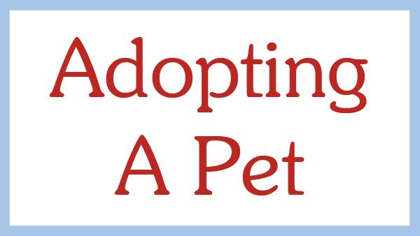 Adopting a Pet.jpg
