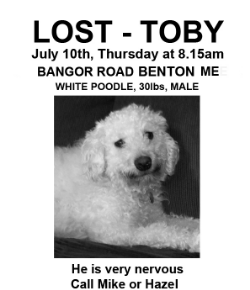 Toby's famous 'LOST' poster