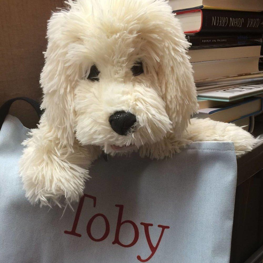 Toby lookelikee.jpg
