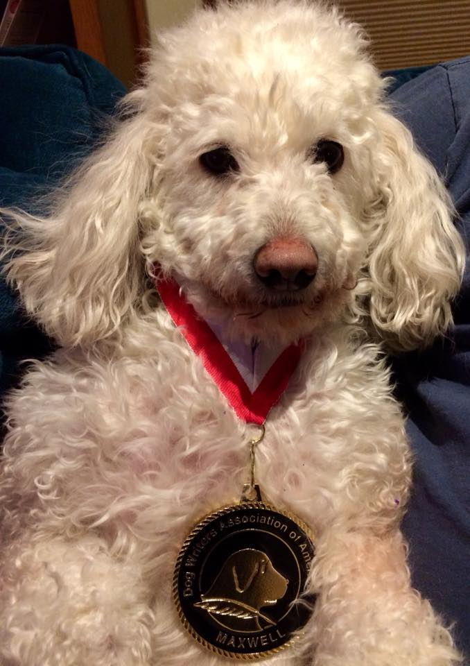Toby with medal.jpg