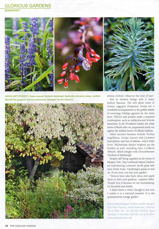 East Lambrook Mannor Gardens EG001-4.jpg