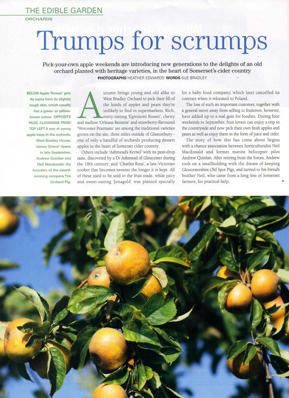 West Bradley Orchard EG001-1.jpg