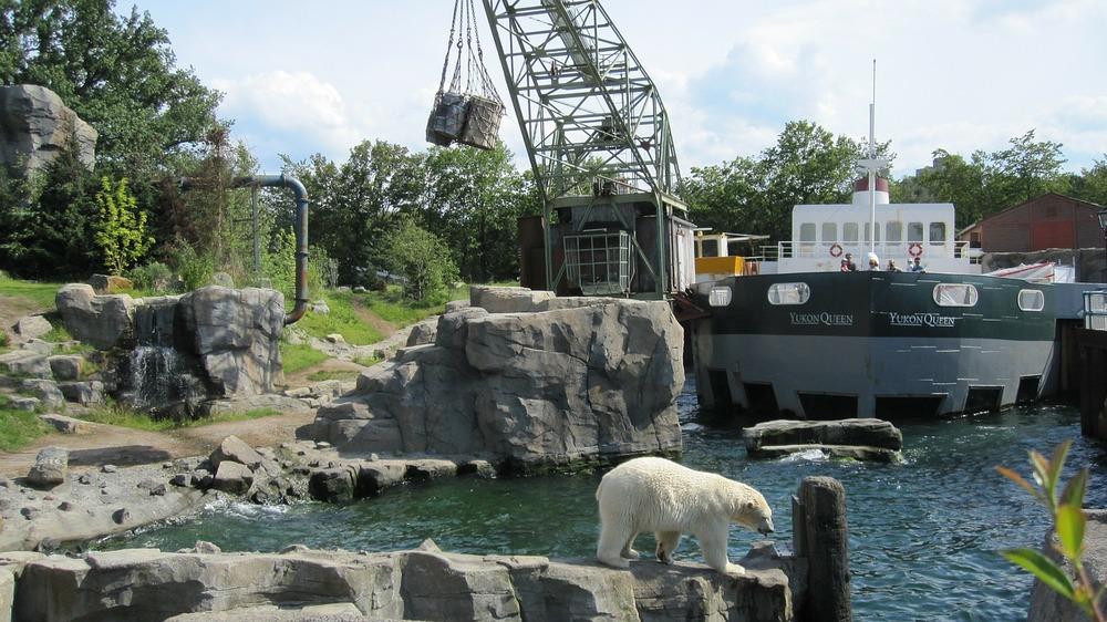 zoo-hannover-66356_1280.jpg