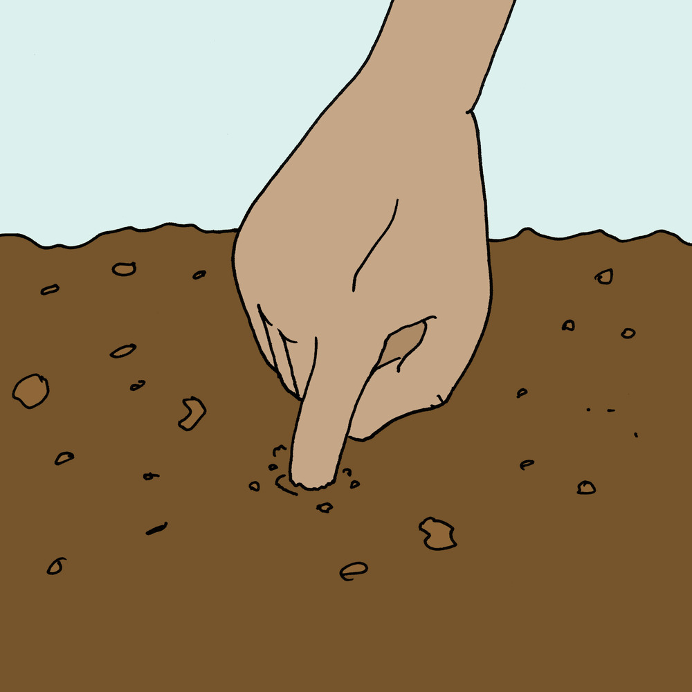 QUICKLY TEST SOIL MOISTURE WITH YOUR FINGER