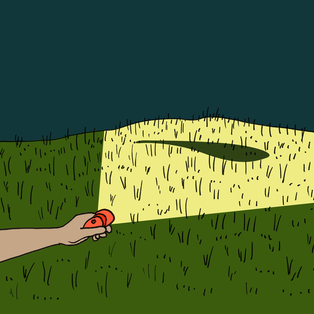 FARMERS CHECK FIELDS AT NIGHT WITH A FLASHLIGHT TO SEE WHERE THEY NEED TO ADD SEEDS/FERTILIZER