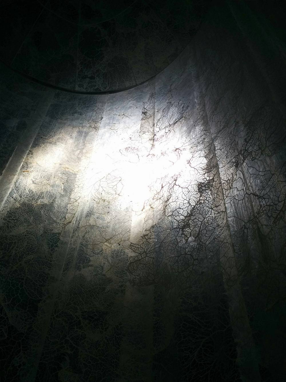 Elpida Hadzi-Vasileva, Fragility (Detail showing light)