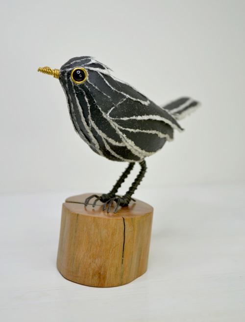 blackbird+3.jpg