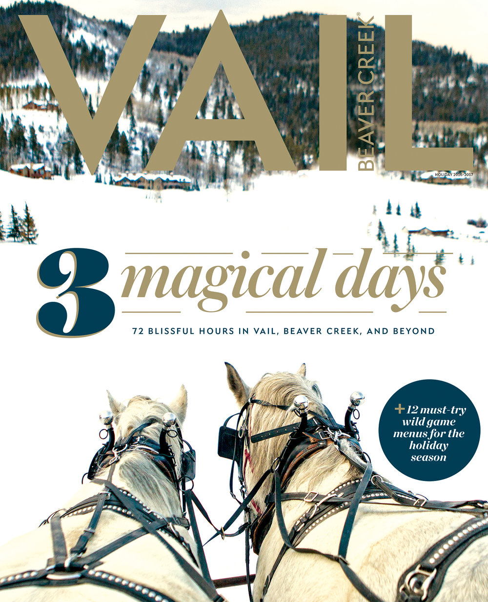 Vail_cover_2.jpg