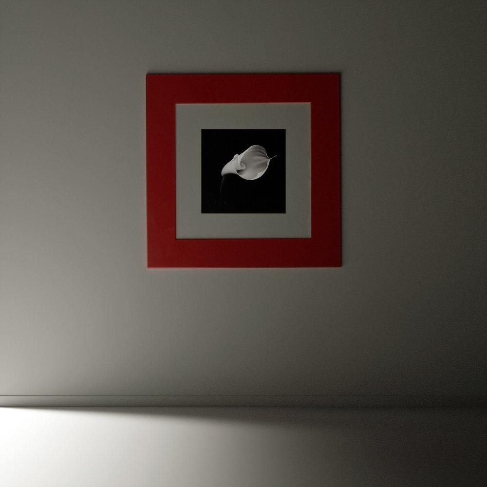 red frame 2.jpg