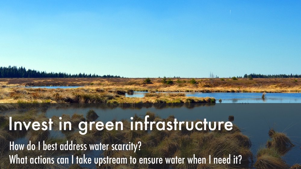 green infrastructure small.jpg