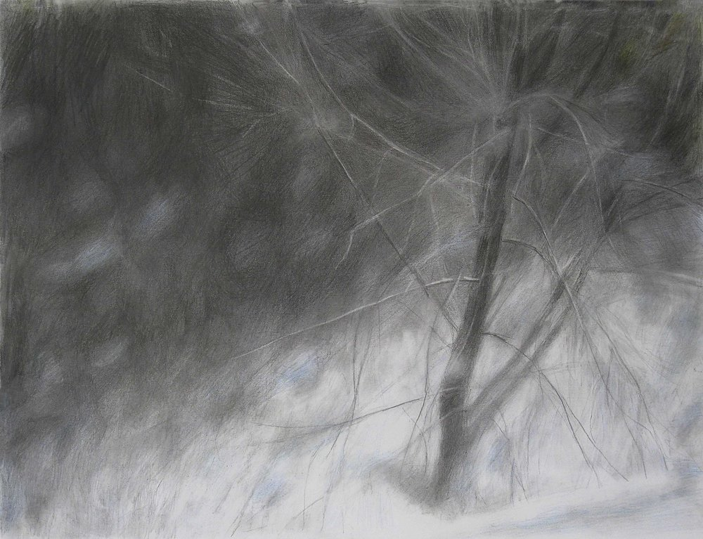 From the Studio Window, Winter