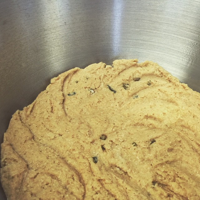 Our bagel dough resting before shaping and boiling.