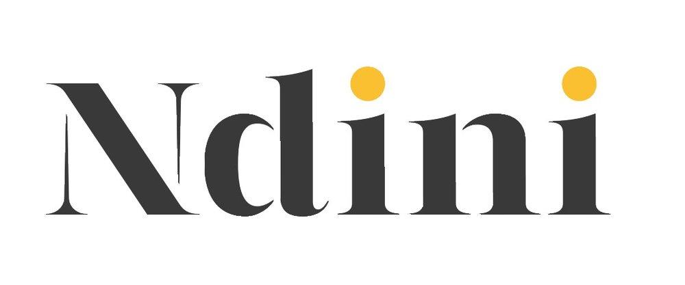 ndini_logo2.png
