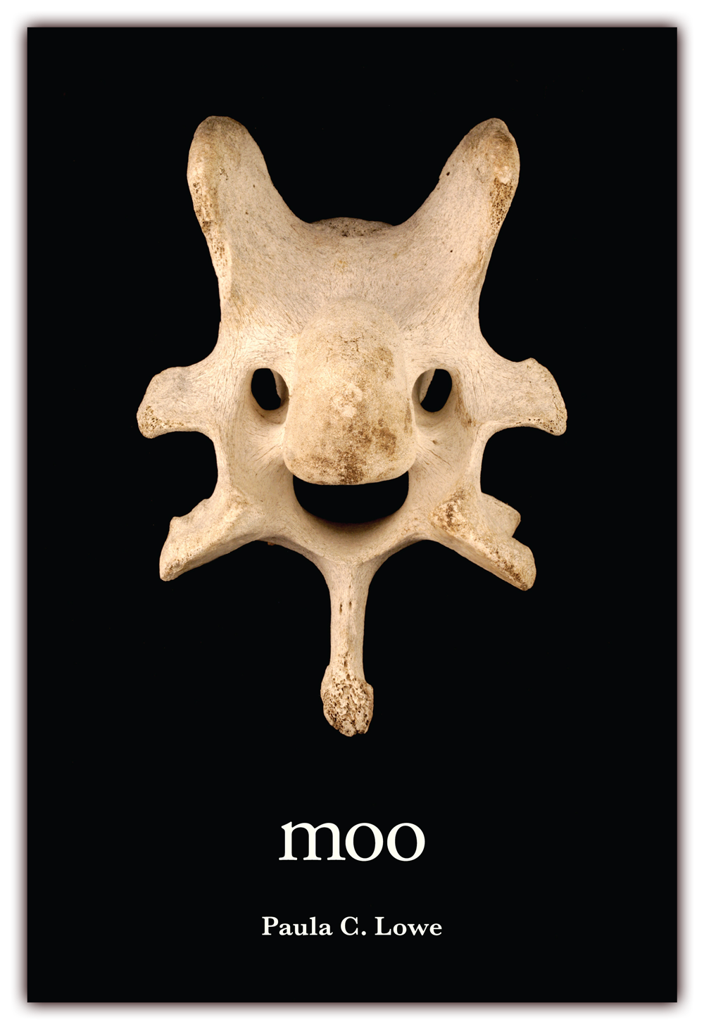 moo   (front cover) Poems by Paula C. Lowe  CLICK IMAGE TO ENLARGE