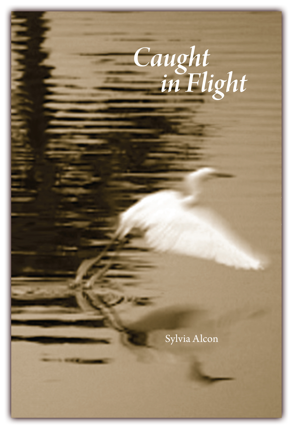 Caught In Flight   (front cover) Poems by Sylvia Alcon CLICK IMAGE TO ENLARGE