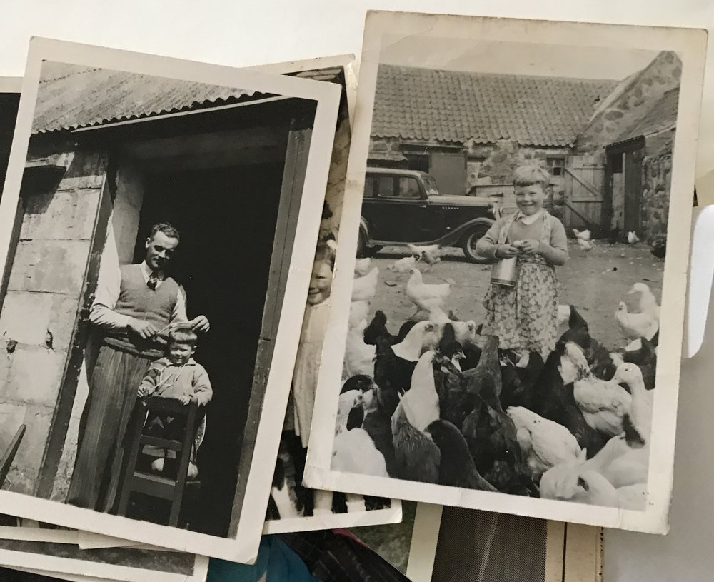 Images of a young Gibb on the farm from a family member's photograph collection.