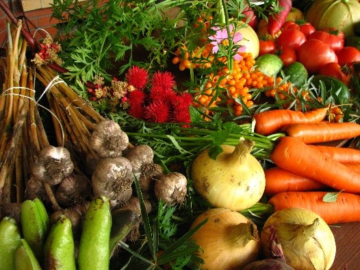 Agriculture, Natural Resources & Food Production