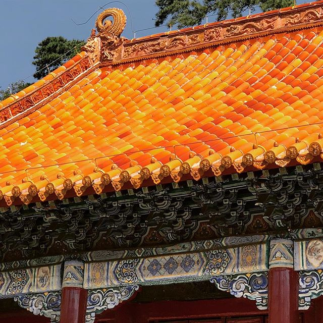 Rich color of glazed ceramic on imperial roof. #chinesearchitecture #imperial