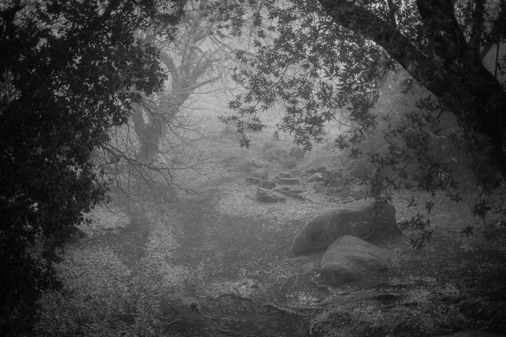 Rock Garden Trail taken w/Fuji X-E1,35mm F1.4