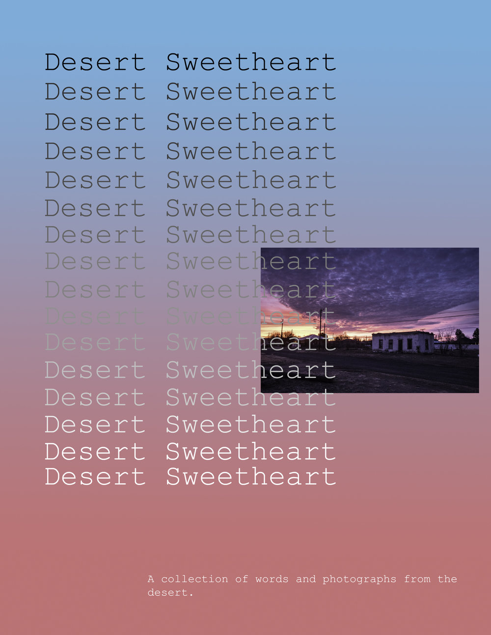 desert sweetheart.jpg