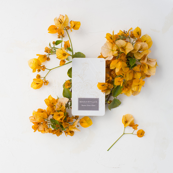Fleurot_FloralTarot_Botanical_Bougainvillea_Card_Web.jpg