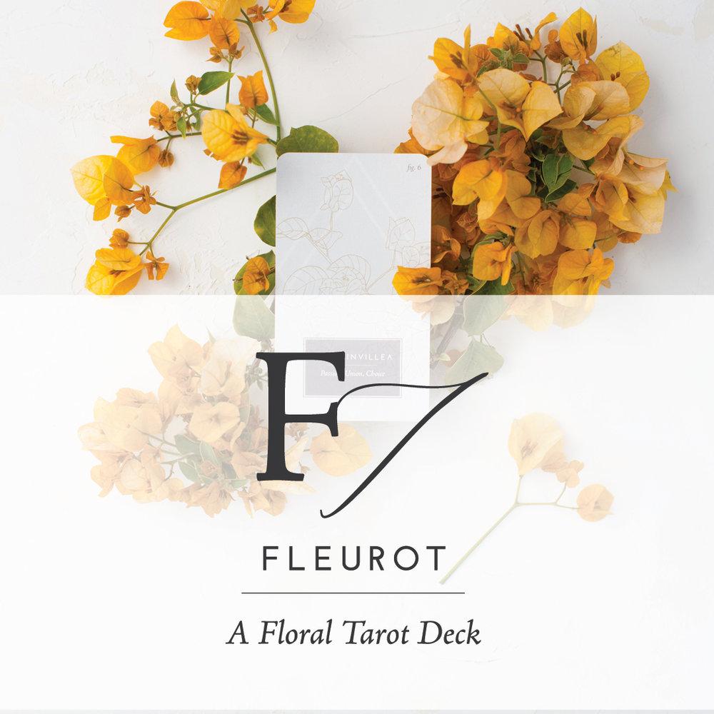 Fleurot_Promo-01.jpg