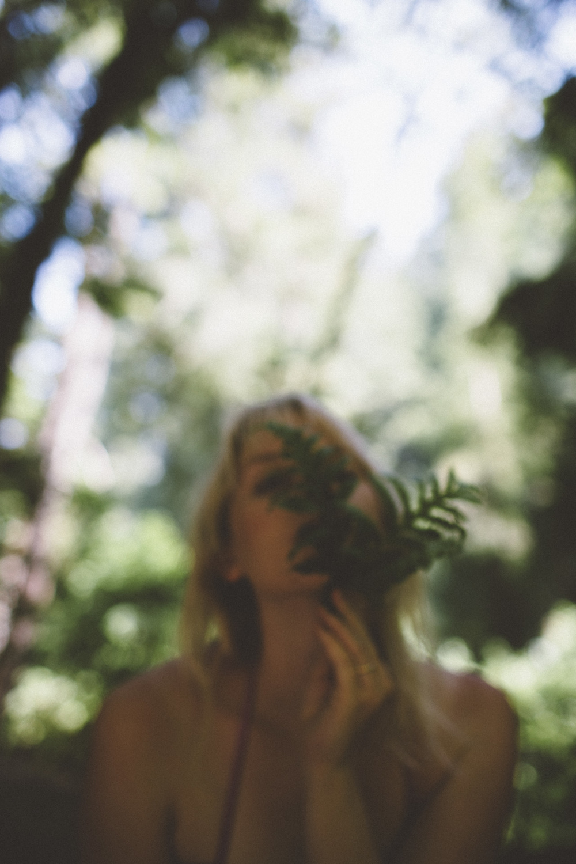 lake fern-001.jpg