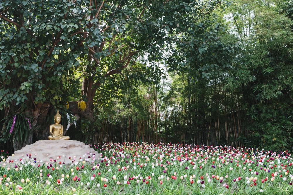 thailandlowres-013.jpg
