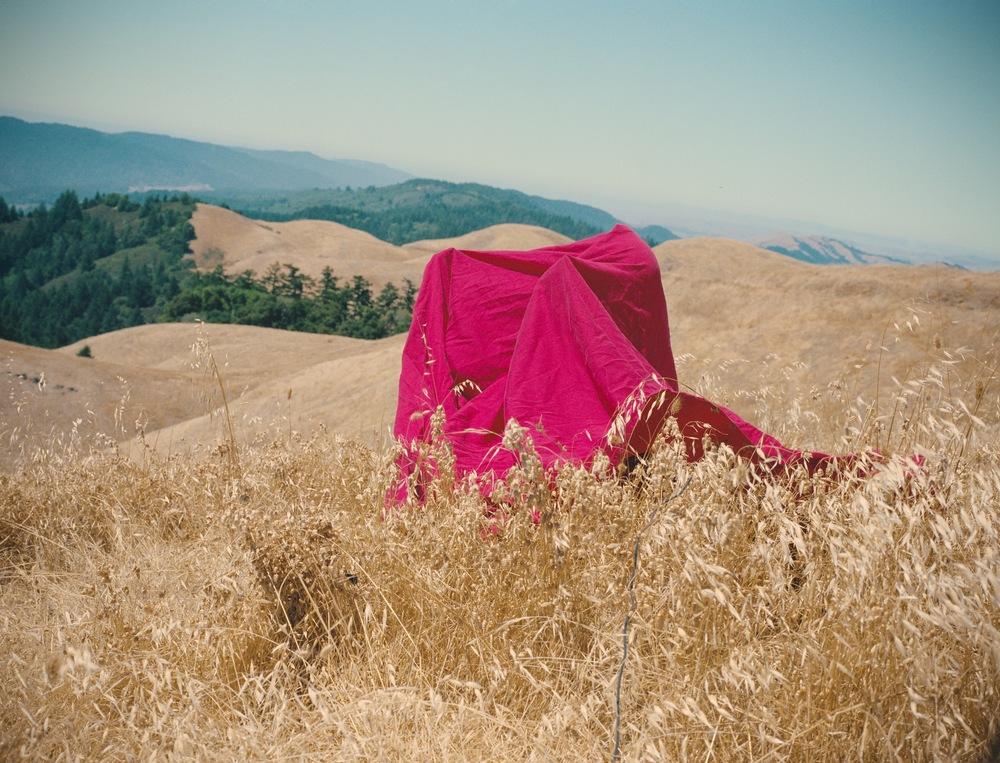 Red Thread Mt Tamalpais_Lawrence web.jpg
