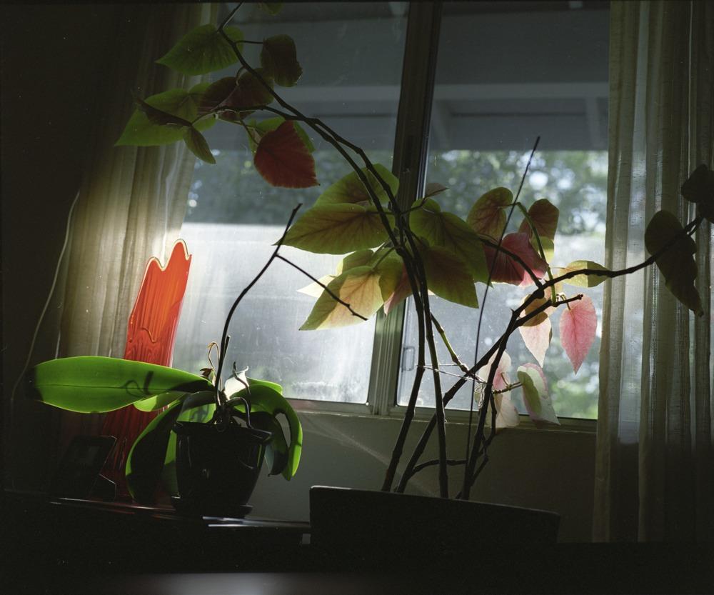cool window.jpg